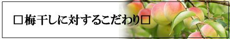 �ߴ������Ф��Ƥ������� �ߡ����祷��åפ��᳤��